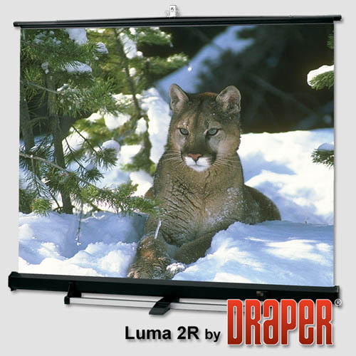 Draper Luma 2/R with Black Carpeted Case