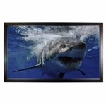 Mustang SC-F135CW169 Fixed Frame Screen 135 diag. (68x120) - HDTV [16:9] - High Contrast White - 1.0 Gain