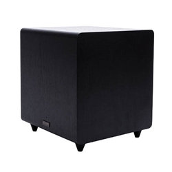 Pioneer SW-E10 Powered Subwoofer