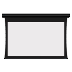 "Stewart Luxus LUX100HST10CLB-12-2-5 Electric - 100"" (49x87) - HDTV [16:9] - 1 Gain"